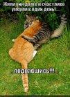 https://lolkot.ru/2012/05/29/zhili-dolgo-i-schastlivo/
