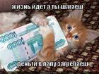 https://lolkot.ru/2013/03/22/zhizn-idyot/