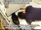 https://lolkot.ru/2016/03/28/zhizn-pod-holodilnikom/