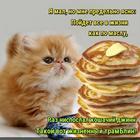 https://lolkot.ru/2019/03/13/zhiznennyy-tramblin/