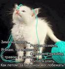 https://lolkot.ru/2015/11/02/zimnyaya-luzhayka/