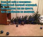 https://lolkot.ru/2014/12/22/zvezdunchik/