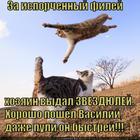 https://lolkot.ru/2015/05/28/zvyozdnyy-desant/