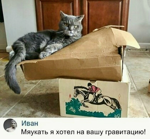 Фотография из альбома Николай