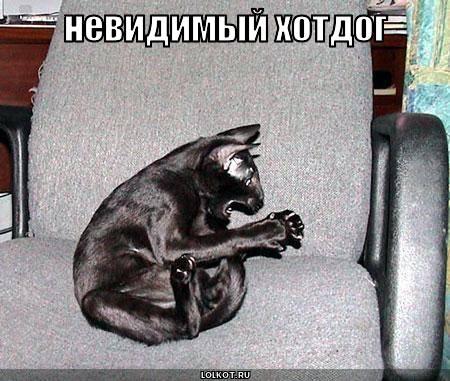 Невидимый хотдог