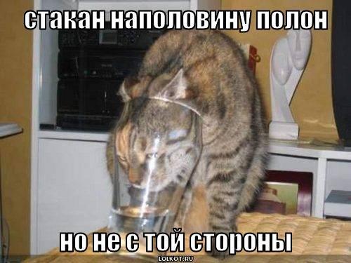 стакан наполовину полон