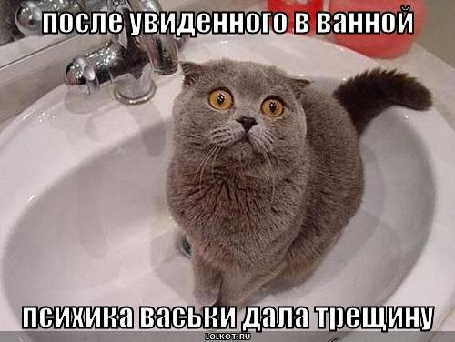 после увиденного в ванной