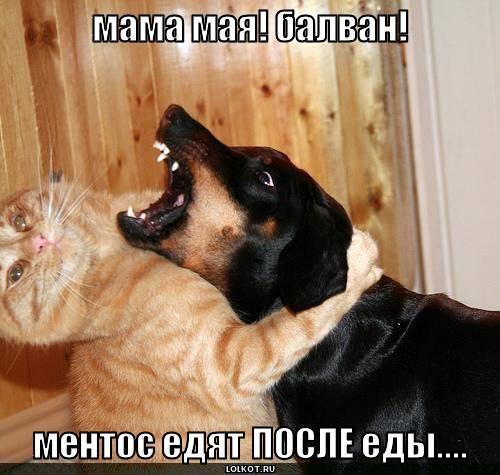 мама мая! балван!