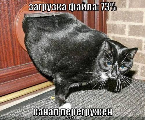 загрузка файла: 73%