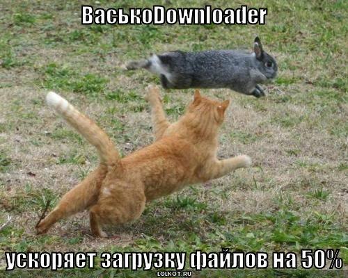ВаськоDownloader