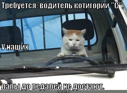 """Требуется: водитель котигории """"С""""."""