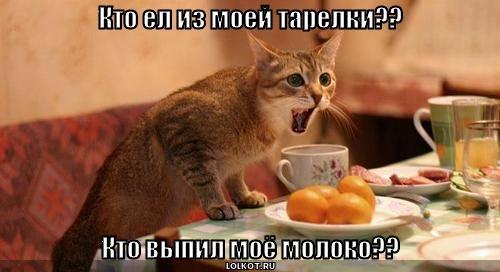 Кто ел из моей тарелки??