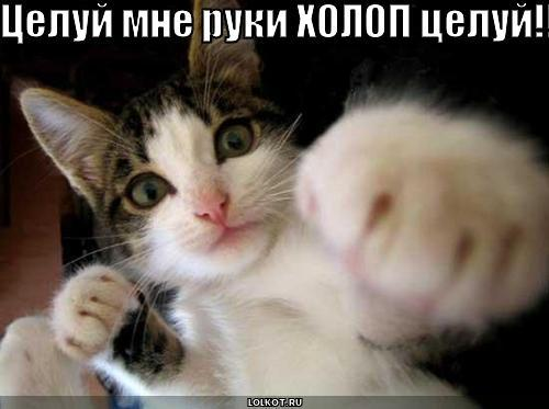целуй руки!