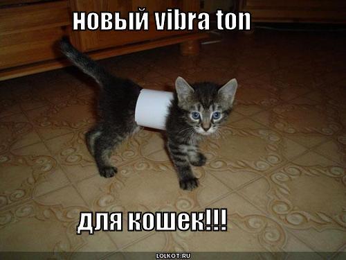 вибратон для кошек