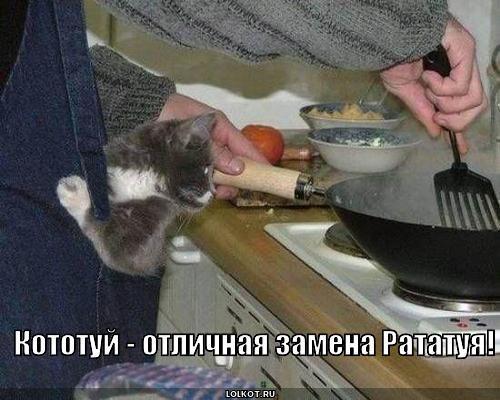 кототуй