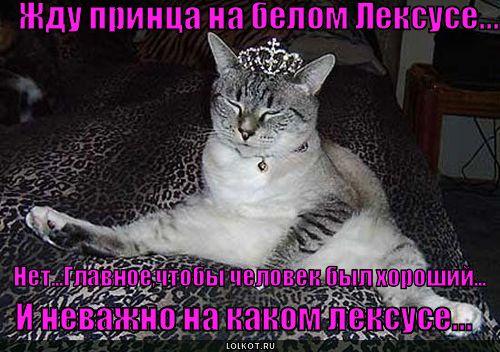 жду принца