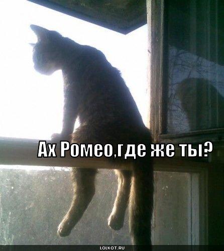 где Ромео?