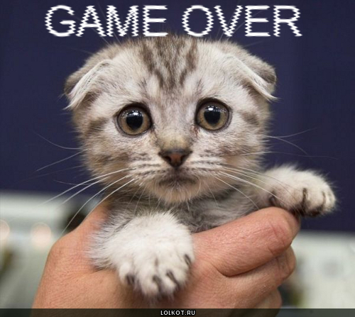 игра закончилась