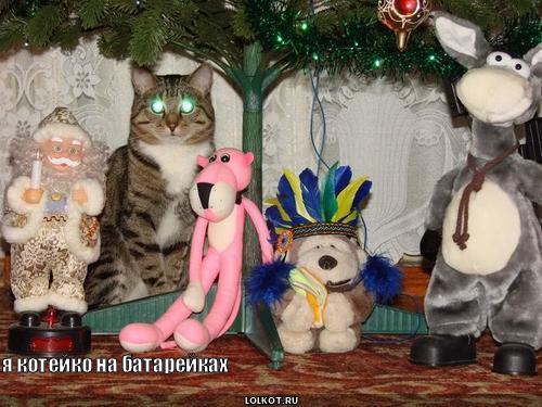 игрушечный котэ