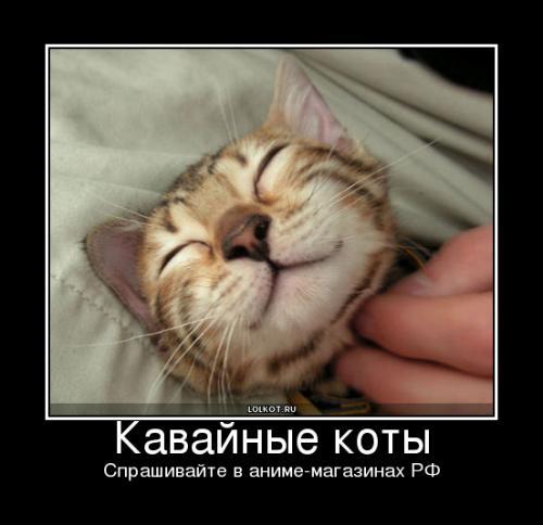 кавайные коты