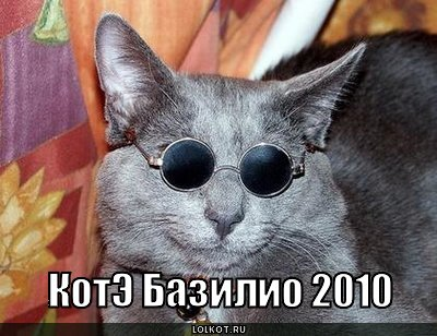 кот Базилио
