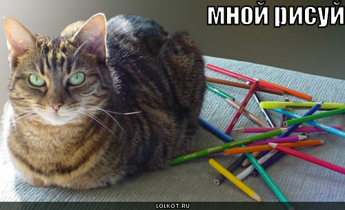 кот против карандашей