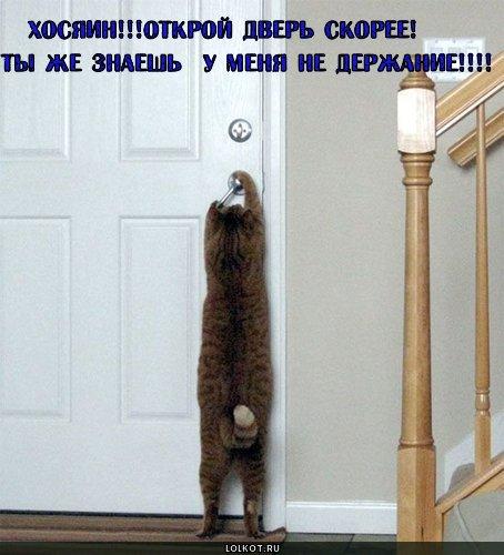 открой дверь!