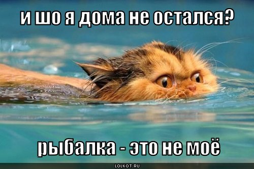 рыбалка -  не моё