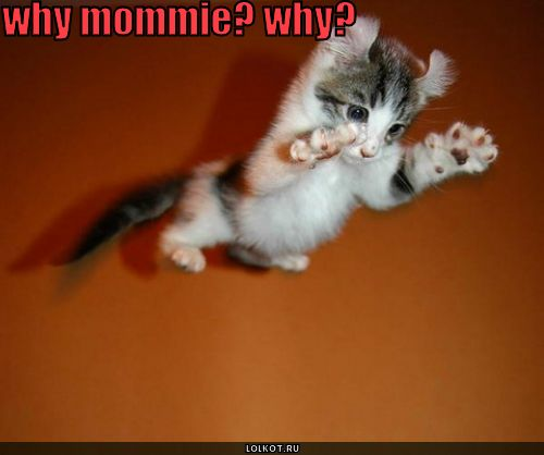 why mommie?