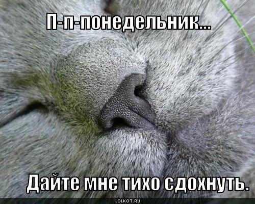 дайте сдохнуть