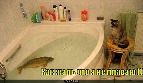 я не плаваю