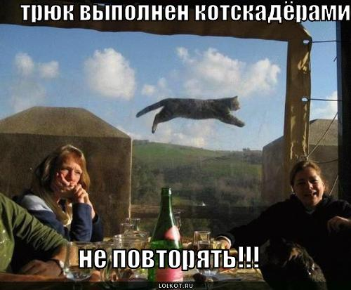 котскадёры