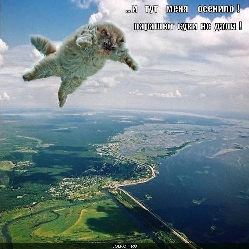 парашют не дали