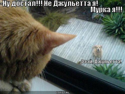 эй, джульетта!
