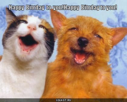happy  bitrday  to  you!