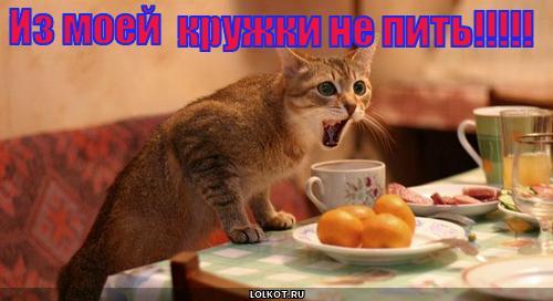 не пить!