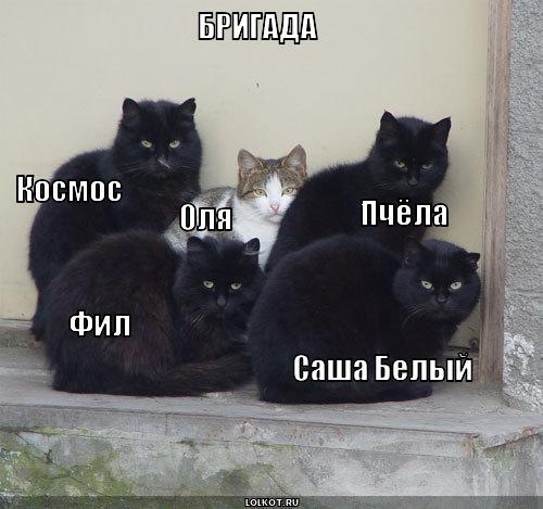 бригада