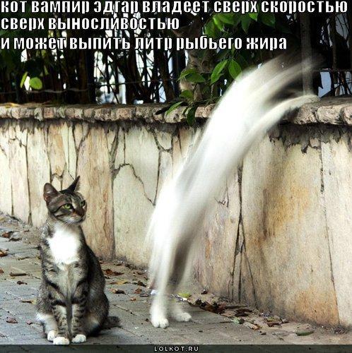кот вампир эдгар
