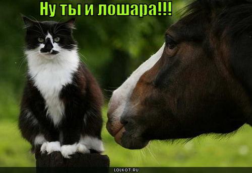 лошара