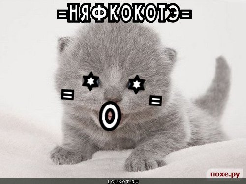 няфкокотэ