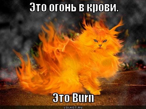 огонь в крови
