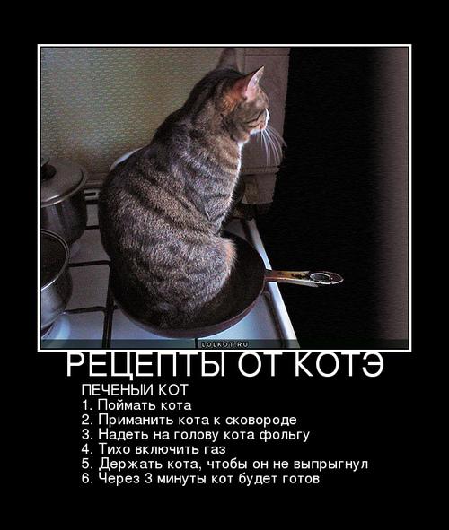 печеный кот