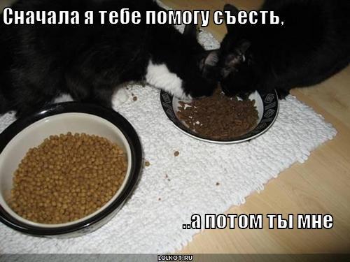 помогу съесть