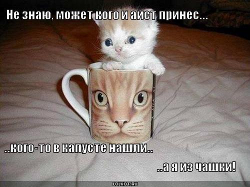 я из чашки