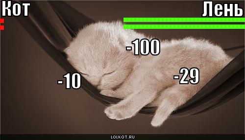 кот vs лень