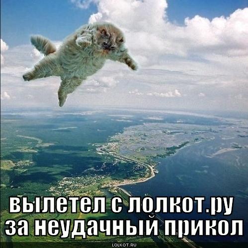 вылетел с лолкот.ру
