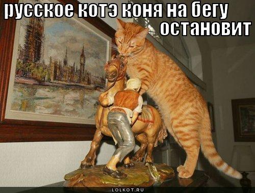 русское котэ