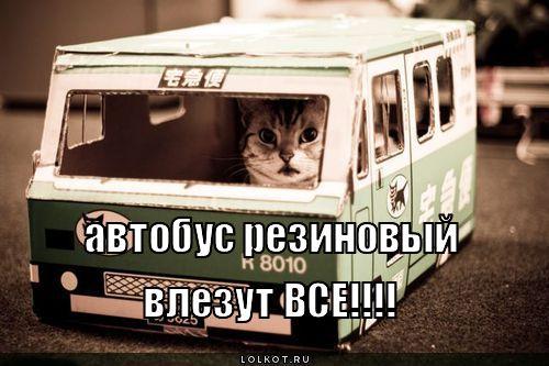 резиновый автобус