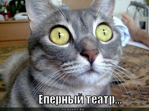 https://static.lolkot.ru/u/2012/01/yopernyy-teatr_1327676931.jpg