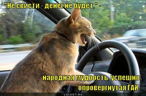 """Не свисти - денег не будет!"""